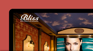 See Bliss HTA Project